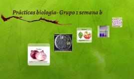 Prácticas biología
