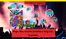 High above: Magic Mushrooms
