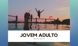 Os autores dividem a juventude e a vida adulta em estágios c