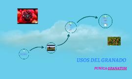 USOS DEL GRANADO