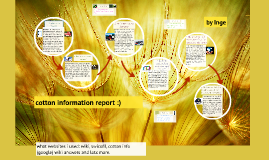 cotton information report :)
