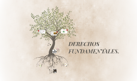 DERECHOS FUNDAMENTALES.