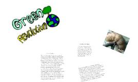 Copy of 1st vs. 2nd Green Revolution