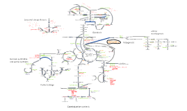 Copy of Copy of Biochem Pathways