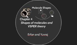 VSPER Theory