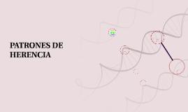 PATRONES DE HERENCIA