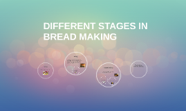 DIFFERENT STAGES IN BREAD MAKING
