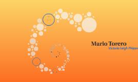 Mario Torero