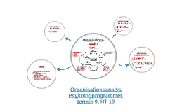 Organisations-analys