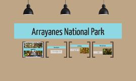 Arrayanes National Park