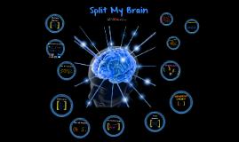 Split My Brain