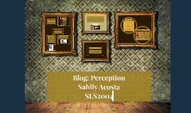 Blog: Perception