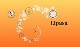 Copy of Lipasa