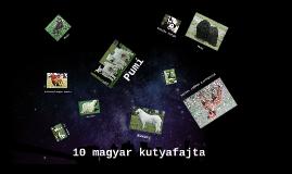 A 10 magyar kutya fajta