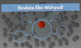 Biodata Eko Wahyudi