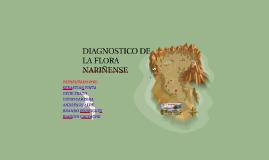 Copy of Copy of DIAGNOSTICO DE LA FLORA NARIÑENSE