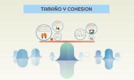 TAMAÑO Y COHESION
