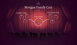 Morgan Family Cats