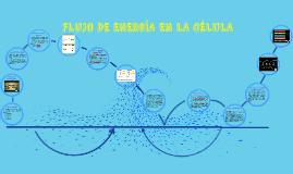 FLUJO DE ENRGÍA EN LA CÉLULA