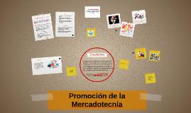 Promoción de la Mercadotecnía