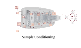 Copy of SAMPLE CONDITIONING