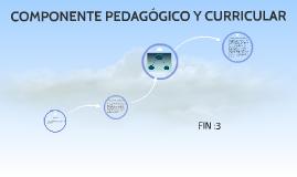 COMPONENTE PEDAGÓGICO Y CURRICULAR