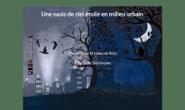 LIGHTversion Une oasis de ciel étoilé en milieu urbain