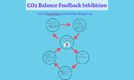CO2 Balance Feedback Inhibition