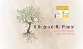 Copy of Le piante: organizzazione