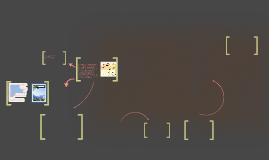 """OBJETIVO """"A"""" : Describir las vías y los mecanismos de la rea"""