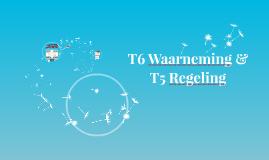 T6 Waarneming & T5 Regeling