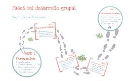 Copy of Fases desarrollo grupal