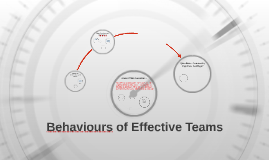 Behaviours of Effective Teams 2016 Pro mini camp conference