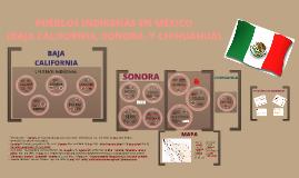 PUEBLOS INDÍGENAS EN MÉXICO