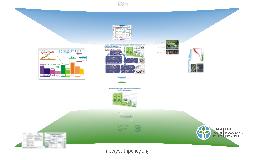 Доклад 2: Альтернативное видение устойчивого развития общества