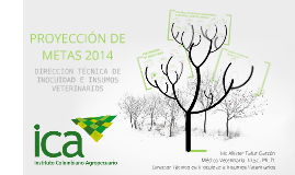 PROYECCIÓN DE METAS 2014