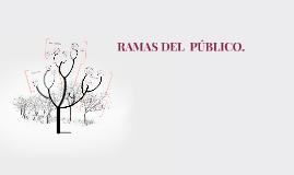 RAMAS DEL  PÚBLICO.