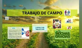 Copy of Trabajo de Campo
