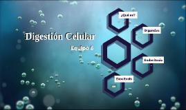 Digestion Celular - Equipo 6