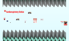 Cardiorespiratory Station
