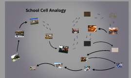 Copy of School Cell Analogy