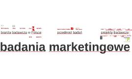 WBM. Wprowadzenie i proces badań marketingowych