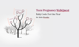 Teen Pregnancy WebQuest