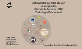DIOXIDO DE CARBONO CO2