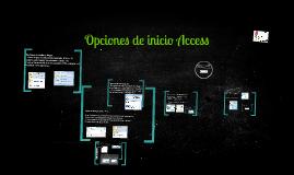 Opciones de Pegar. (CTRL + V