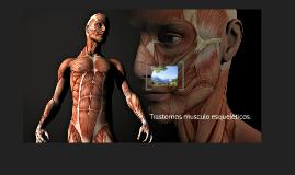 Copy of Trastornos musculo esqueléticos.