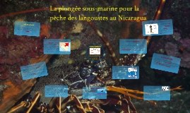 La plongée sous-marine au Nicaragua