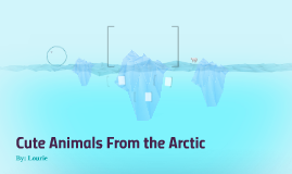 Animals From the Arctic
