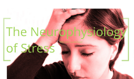 Copy of Neurophysiology of Stress
