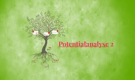 Potentialanalyse 2